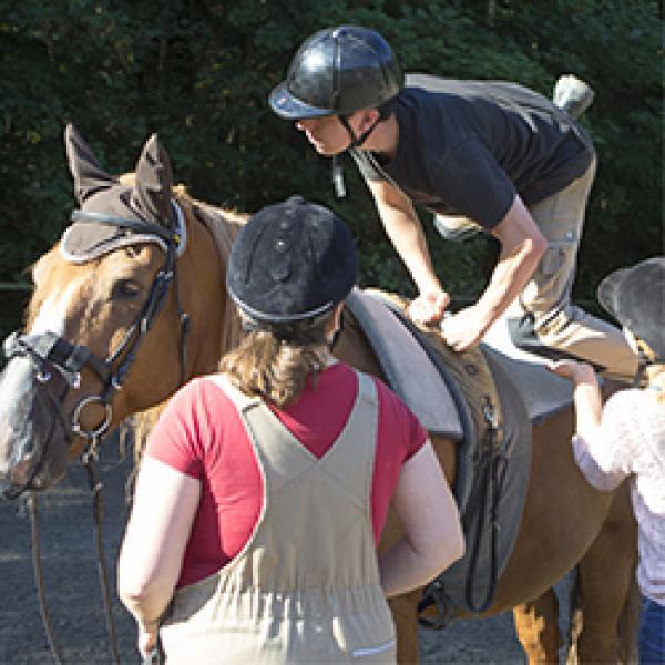Aufstieg aufs Pferd